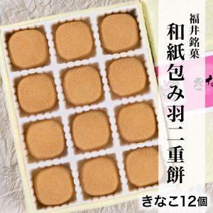 washikinako12